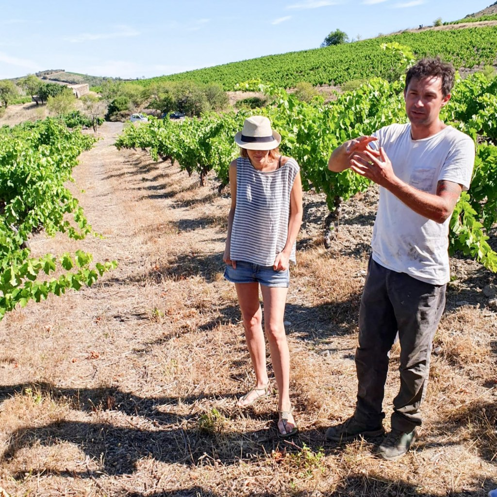 Domaine Balansa, agriculture biologique, vin vivant